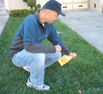Man sprays peticides on lawn