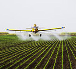 Ariplane spraying filed