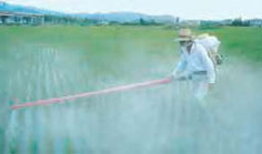 Farmer sprays field