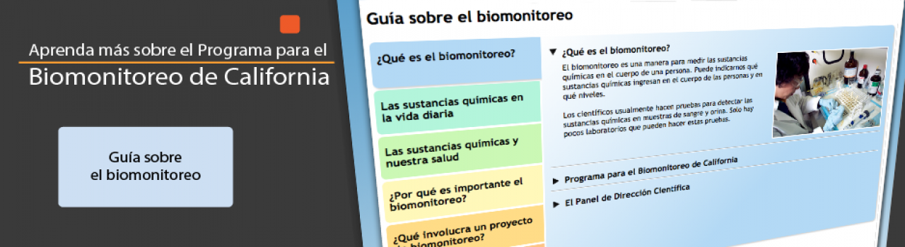 Screenshot of Spanish Biomonitoring guide